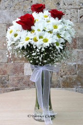 Red roses, your love , show your loved ones alive now as innocence with white daisies .