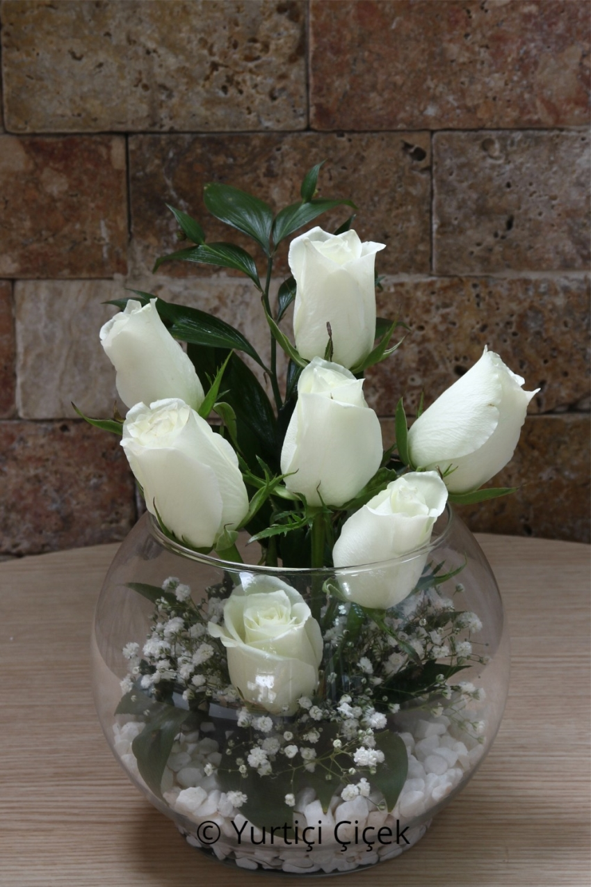 White Rose: 7 Pieces 