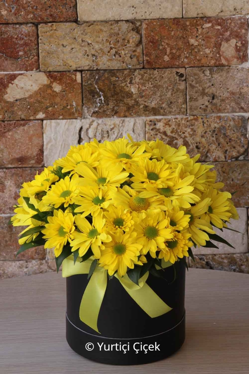 All the colors of the season, surprise your loved ones prepared flower arrangements of the most beautiful in the morning.
