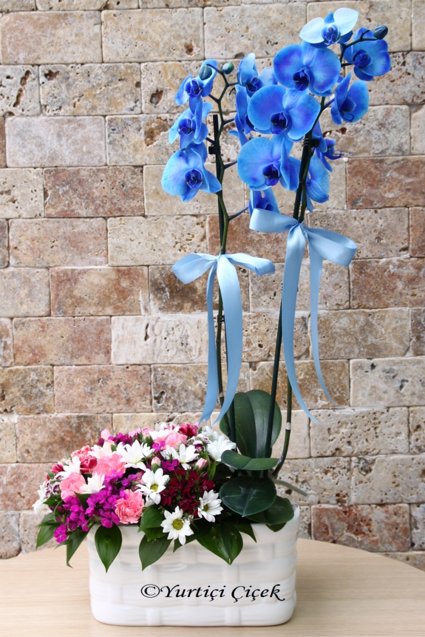 Double Branched blue orchids and wild flowers beside and a Special Surprise Making Opportunity Different Arrangement with just one mouse click away!