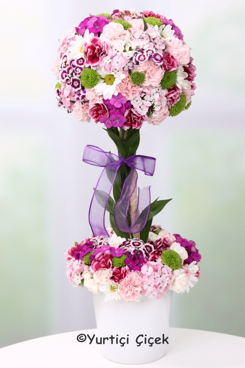 Heating your heart to your beloved with Color Could Just place your order for orchids, you can choose to describe the unseen Lecture.