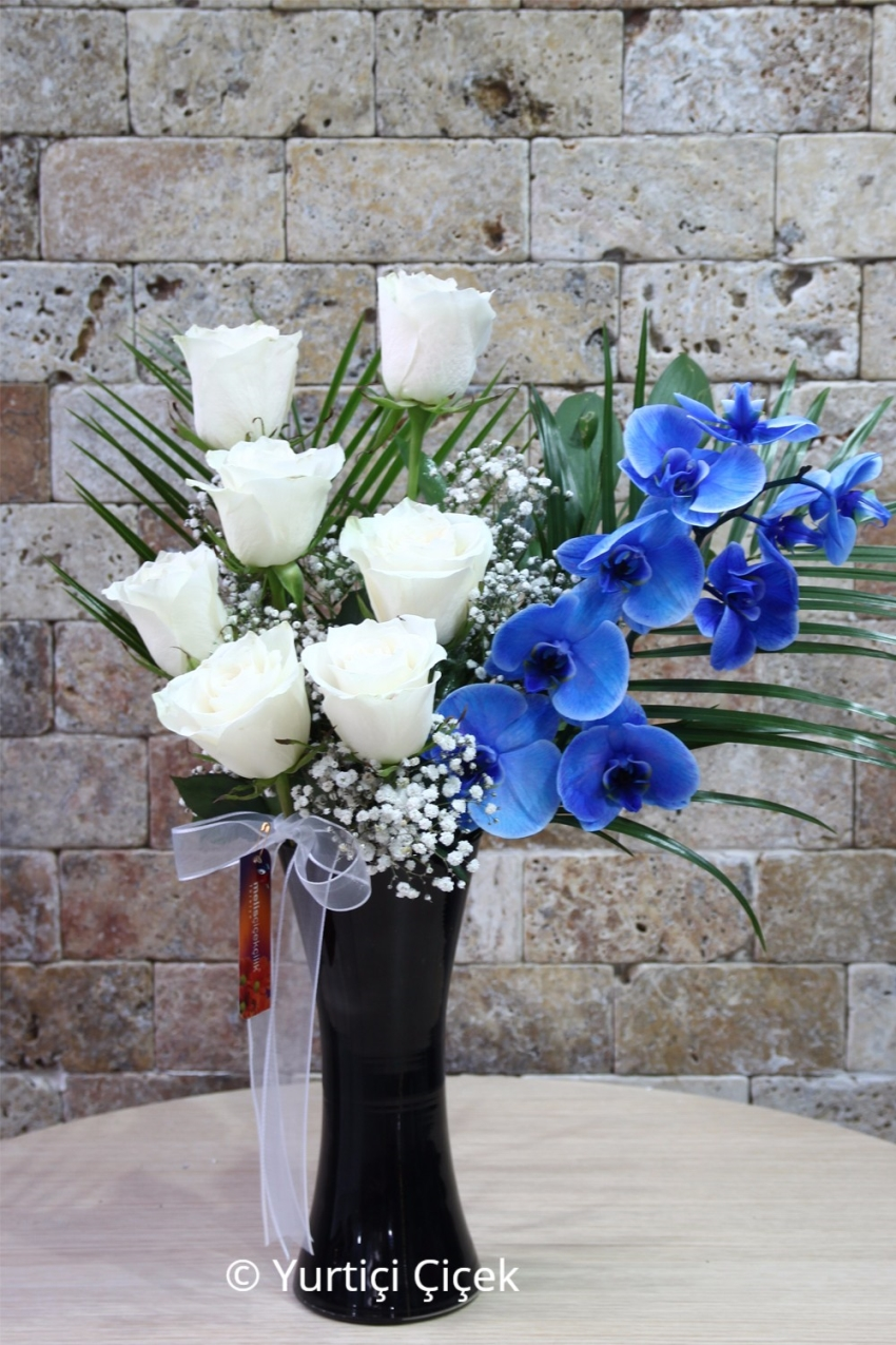 You can do it with the most special presentation of your love Blue Orchid and White Roses.