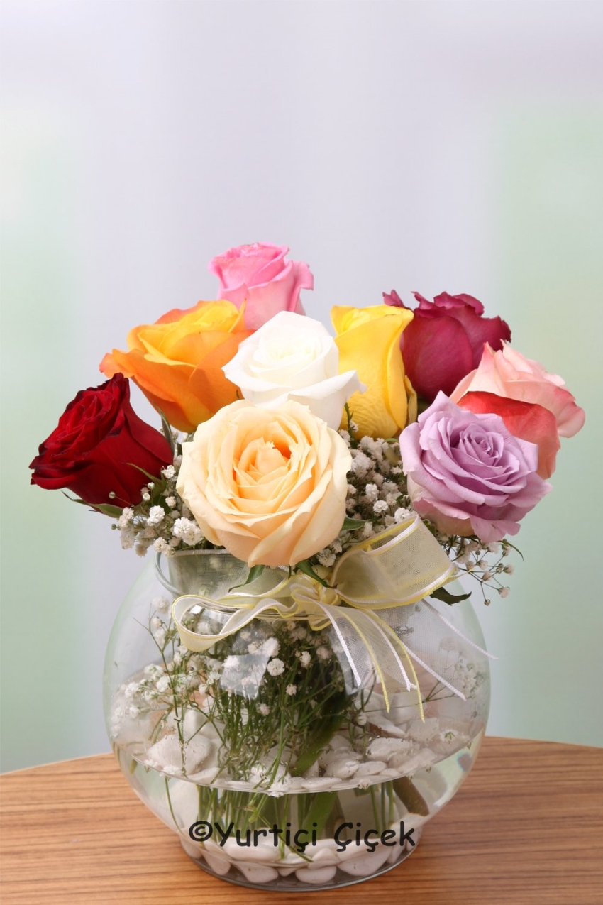 Glass Fanoos 9 Units can offer nature is beautiful colors each loved ones with colored roses.