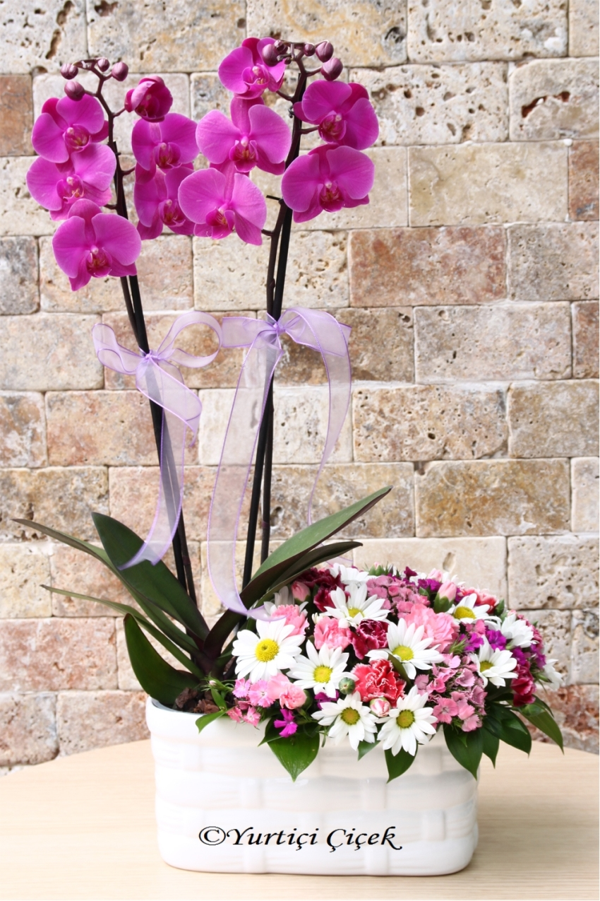 Double-stranded loved ones make them feel special arrangement with purple orchids and wildflowers Make a nice surprise.